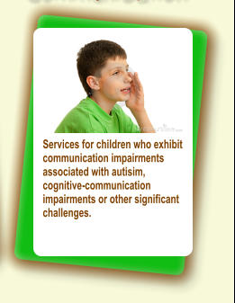 Services for children who exhibit communication impairments associated with autisim, cognitive-communication impairments or other significant challenges.